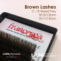 offerinfo-brownlashes